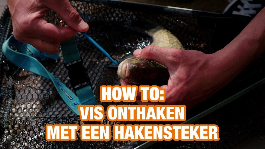 How To: Vis onthaken met een hakensteker (video)