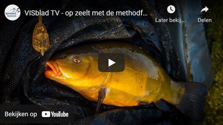 VISblad TV: 'methodisch' op zeelt (video)